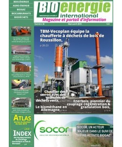 No 36 - mars/avril 2015 - Bioénergie International