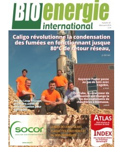 No 41 - mars 2016 - Bioénergie International