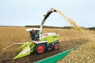 ensilage-de-taillis-a-tres-courtes-rotations-photo-claas-www.bioenergie-promotion.fr