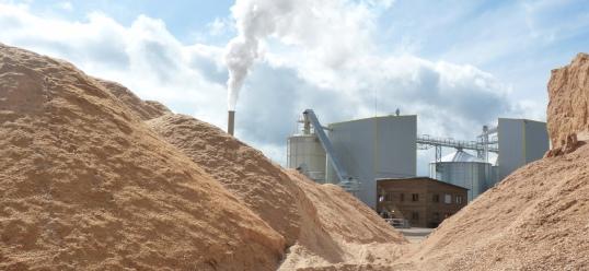 L'usine SGA derrière ses stocks de bois, photo Frédéric Douard