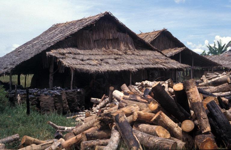 L essor mondial de la biomasse pour tous magazine et for Fabrication charbon de bois