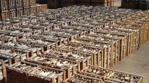 Séchage de bois en casiers, ONF Energie