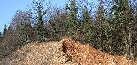 Plaquettes forestières débardées, photo Frédéric Douard