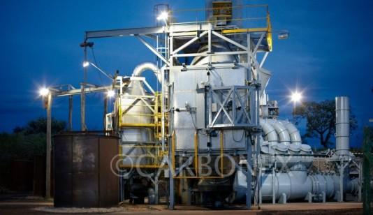 Carbonex va produire du charbon de bois et de l'électricité écologiquement