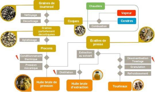 Procédés de transformation du tournesol à Lezoux, SAIPOL. Cliquer pour agrandir.