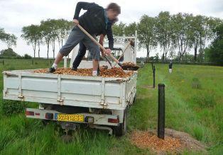 Techniques et avantages de l'agroforesterie en France