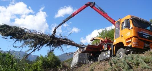 Mobilisation de la plaquette forestière en montagne