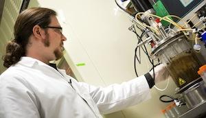 Bioréacteur de laboratoire associant la bactérie et le champignon, photo Joseph Xu