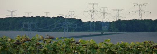 Réseau électrique à haute tension, photo Frédéric Douard