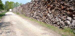 Stock de dosses et délignures sur la plateforme de Gascogne Wood Products à Paleyrac, photo Frédéric Douard