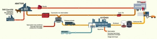 Schéma de la filière ESTENER - Cliquer pour agrandir
