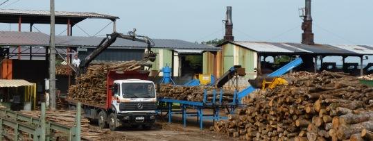 La plateforme bûches et charbon de bois du groupe Gascogne à Saint-Pardoux-et-Vielvic, photo Frédéric Douard