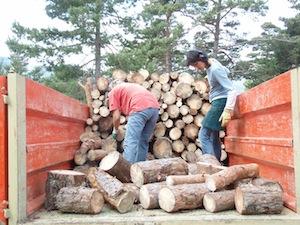 Chargement de bois bûche, photo Dryade 26