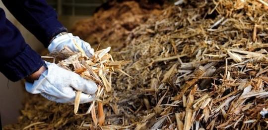 Bois d'emballage déchiqueté, photo Véolia