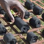 Briquettes de Typha, photo Gret