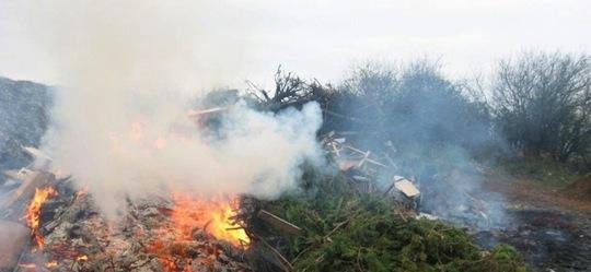 Brûlage de déchets verts à l'air libre, photo Sud Ouest