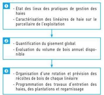 Les étapes du Plan de gestion des haies