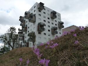 Immeuble de 64 logements également chauffé à partir de la chaufferie à granulés, photo Frédéric Douard