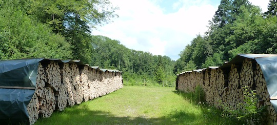 Ballots de bois de chauffage en Argovie, photo Frédéric Douard