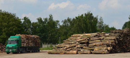 Livraison de bois sur le parc de la centrale biomasse de Lens, photo Frédéric Douard