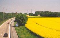 Biocarburants_ValBiom