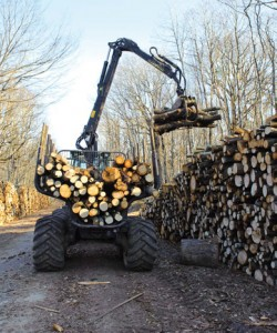 Exploitation forestière, photo Arnaud Bouissou, MEDDE-MLET