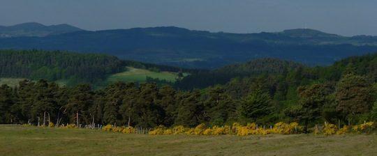 Forêts du Velay, photo Frédéric Douard