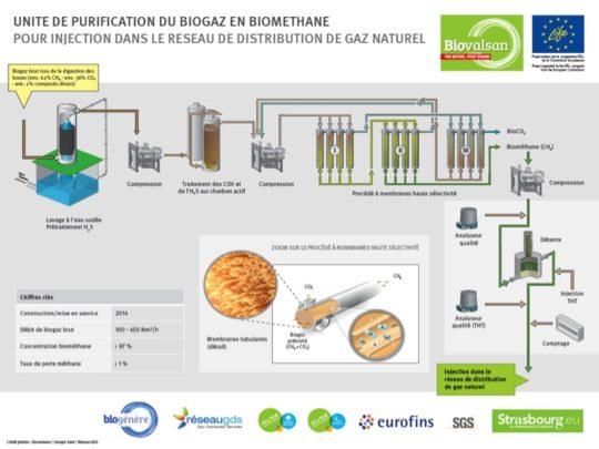 Schéma de principe de la future unité de purification de Biovalsan