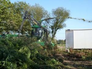Chantier bois-énergie Test Breizh Forêt Bois n°1, photo Abibois