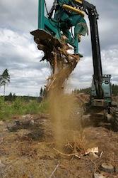 Arrachage des souches, photo UPM