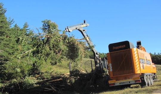 Déchiquetage de pins pour l'ASL Le Tréboux dans les Alpes de Haute-Provence, photo Marie de Guisa, AgroParisTech