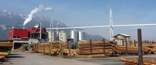 La scierie Bois du Dauphiné en Isère a été la première en France à investir dans une production combinée d'électrcité et de granulés, photo Frédéric Douard
