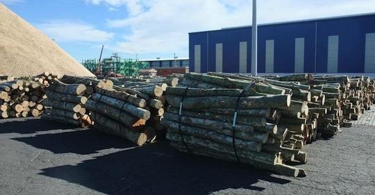 Parc à bois-énergie Euroports