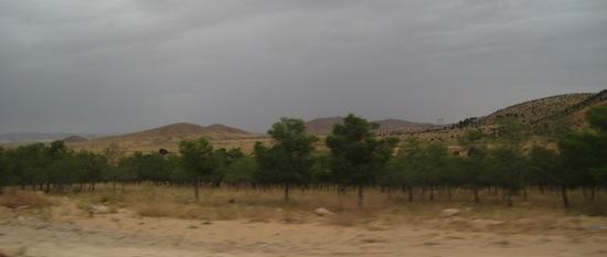 Barrage vert