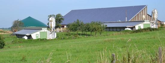 Le GAEC Hillmar à Lohr, photo MT Energie