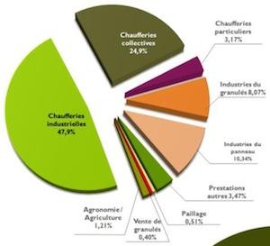 Le marché de Biocombustibles SAS