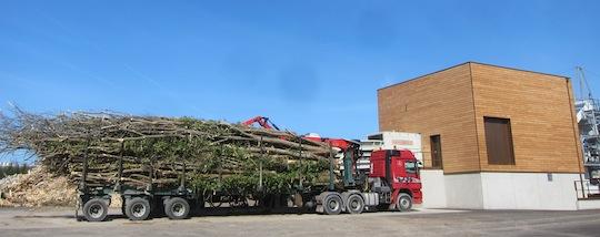 Grumier avec perches de bois-énergie chez Moulin TP, photo Moulin TP