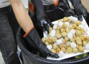 Biens alimentaires jetés à Hong Kong, photo timeout.com.hk