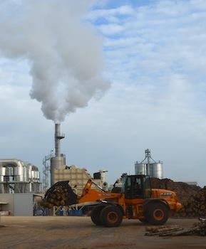 L'usine Biosyl est très majoritairement alimentée en rondins feuillus, photo Frédréic Douard