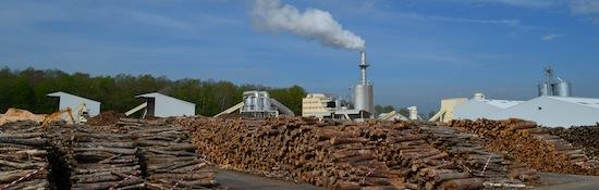 L'usine Biosyl et son stock de rondins feuillus, photo Frédéric Douard