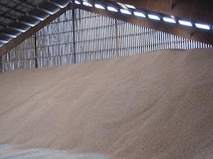 Le nouveau silo de granulés à plat, photo ABE