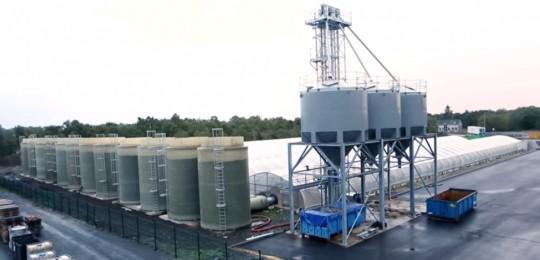 Valoriation de la chaleur de cogénération de META Bio Energies en serres