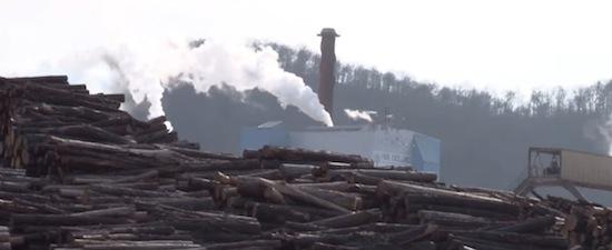Biomass Energie