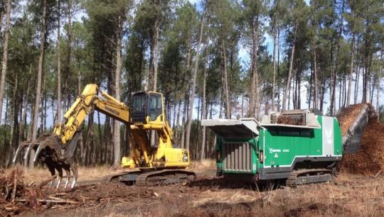 Broyage de souches en forêt avec l'Axtor 6010 de Komptech, photo Loreki