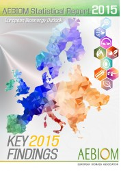 Key 2015 Findings