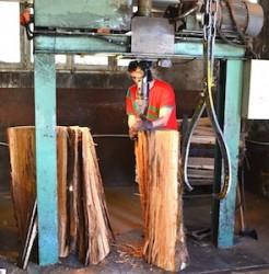 La production de merrains à la scierie de Miremont, photo Frédéric Douard