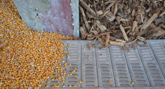Vue de grille de séchage Les Mergers dans une unité de métanisation pour sécher céréales, fourages ou boisénergie, photo Frédéric Douard