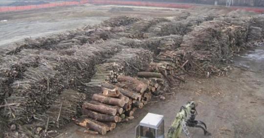 Stock de biomasse pour la centrale de Sospiro