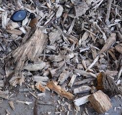 La chaudière Uniconfort de Sospiro accepte des bois de calibre P100, photo Frédéric Douard