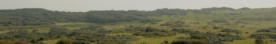 Zone naturelle du Cap Blanc Nez à débroussailler, photo EDEN 62